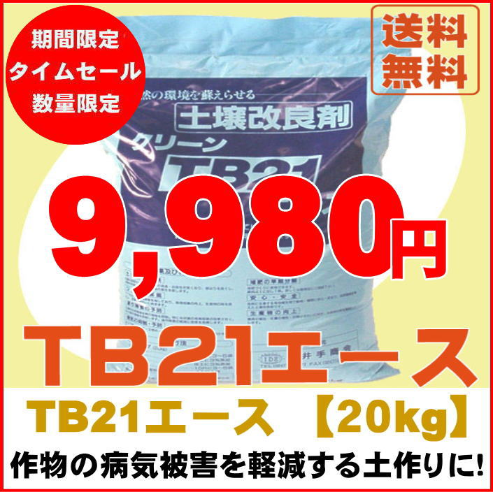 TB21�G�[�X20kg