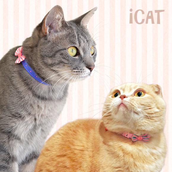 【楽天市場】【猫 首輪】iCat アイキャット キティカラー ピンドット×ボーダーリボン【国産 布製 安全】:犬の服のiDog