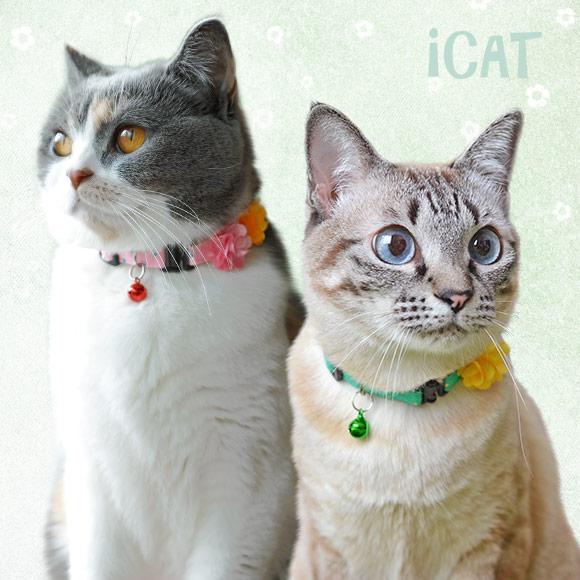 【猫 首輪】iCat アイキャット キティカラー ピンドット×Wフラワー【国産 布製 安全】:犬の服のiDog