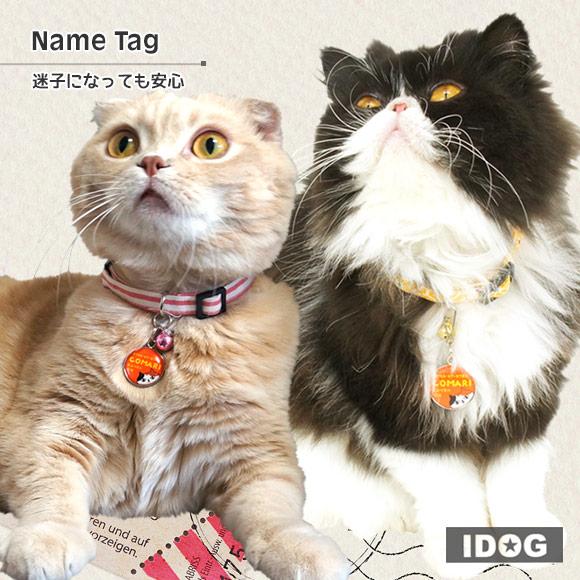 【迷子札 名札】iDog&iCatオリジナル ネームタグ 迷子札ネコ【ネームプレート ドッグタグ】:犬の服のiDog