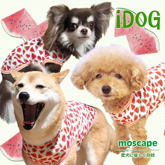 【楽天市場】【虫よけ 犬 服】 iDog アイドッグ スイカタンク moscape モスケイプ 防蚊 防虫 虫除け:犬の服のiDog
