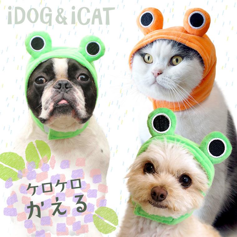 【楽天市場】【犬 着ぐるみ】iDog アイドッグ iDog&iCatオリジナル 変身かぶりものスヌード ケロケロかえる【耳 汚れ防止】:犬の服のiDog