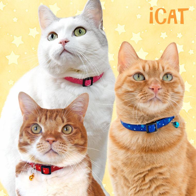 【猫 首輪】 iCat カジュアルカラー ランダムスター 【国産 布製 安全】
