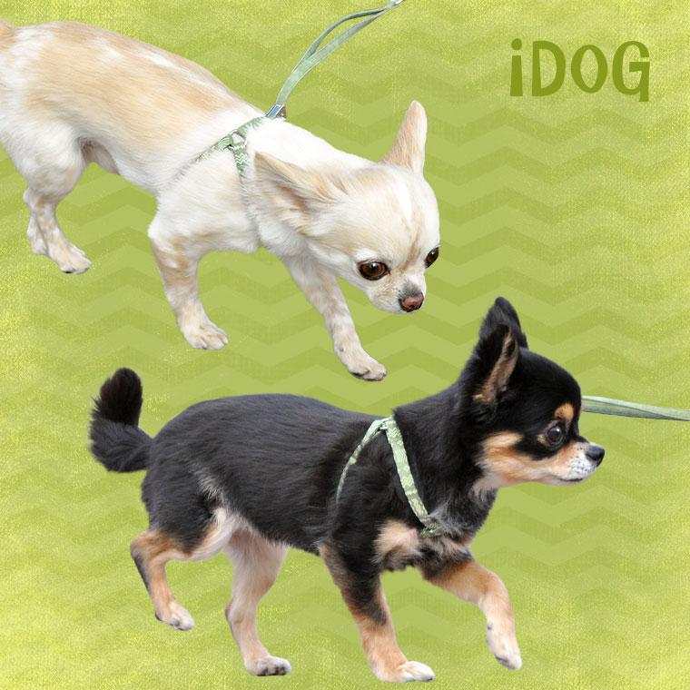 【犬 首輪】 ワンタッチハーネス 蓄光ネイティブ柄 【国産 布製】:犬の服のiDog