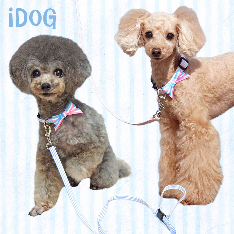【犬 首輪】 iDog アイドッグ リード・カラーセット ピンボーダー×パステルボーダーリボン 【国産 布製】:犬の服のiDog