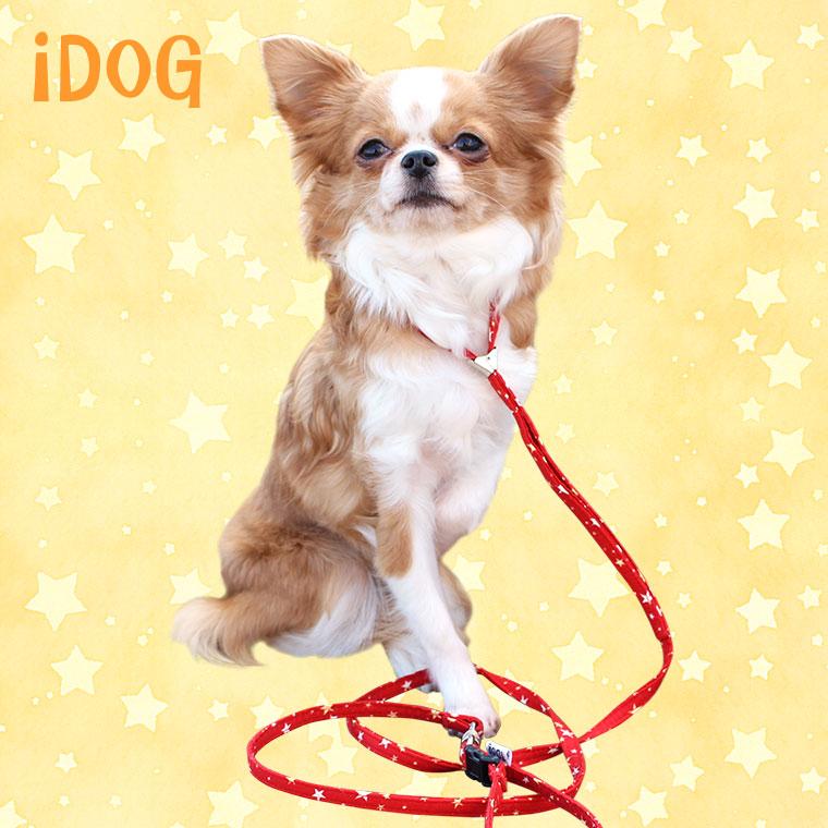 【犬 首輪】 iDog アイドッグ ワンタッチリード ランダムスター 【国産 布製】:犬の服のiDog