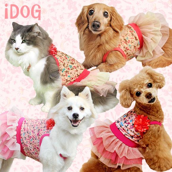 iDog アイドッグ チェリーチュールワンピ:犬の服のiDog