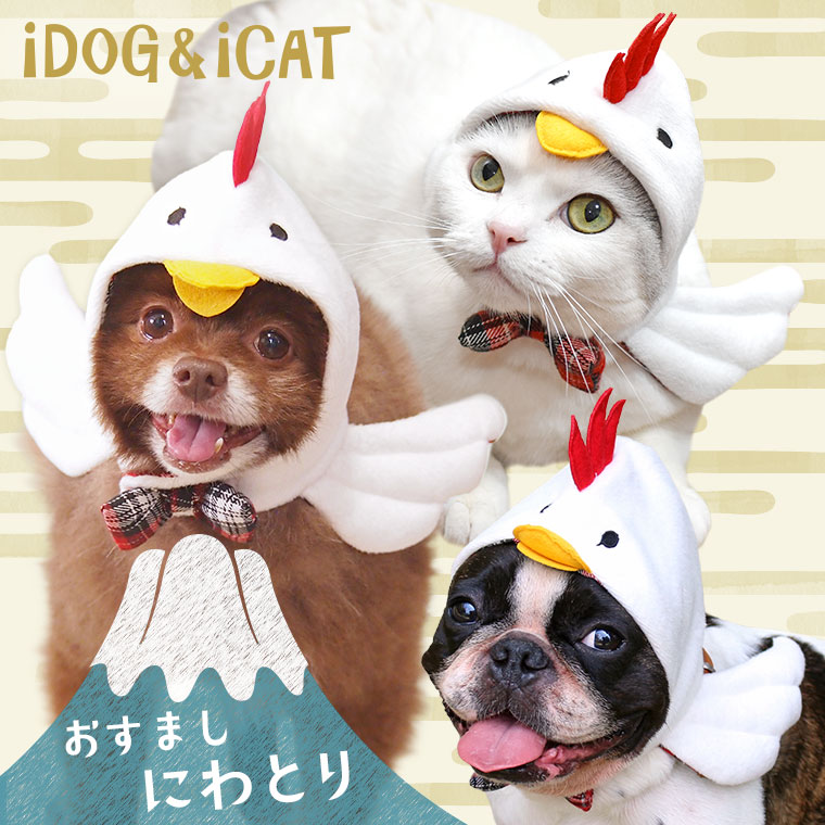 【酉 かぶりもの】iDog&iCat オリジナル 変身かぶりものスヌード おすましにわとり【犬 お正月 干支 鳥 年賀状】:犬の服のiDog