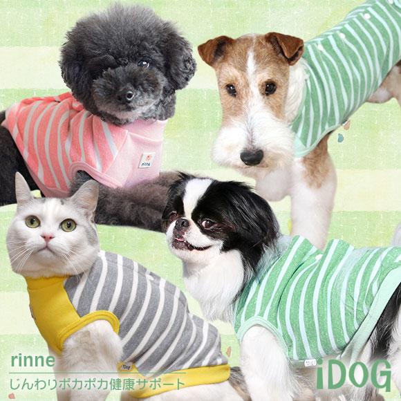 【シニア 犬 服】iDog アイドッグ 背中開きボーダータンク rinne: 【rinne 介護服】犬の服のiDog