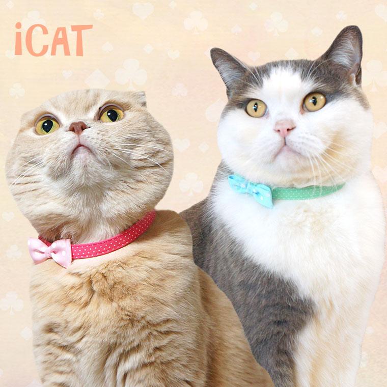 【猫 首輪】 iCat ラブリーカラー ピンドット×水玉リボン 【国産 布製 安全】:犬の服のiDog