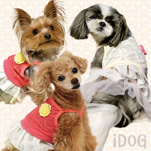 【ワンピース 犬 服】 iDog アイドッグ 透かしレースのフラワーワンピ 【国産 犬の服】:犬の服のiDog
