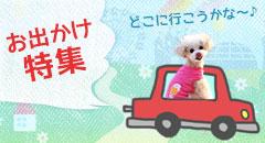 行楽シーズン☆お出かけ特集| 犬服・猫用品の卸売り専用サイト|idogicat.net