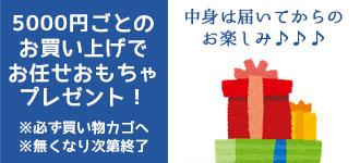 5,000円ごと購入でプレゼント