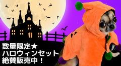 【楽天市場】季節の特集> ハロウィン特集:犬の服のiDog