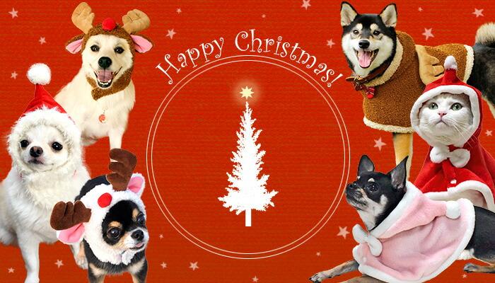 クリスマス特集|犬の服のiDog&iCat