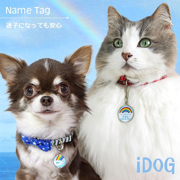 【迷子札 名札】 iDog&iCat ネームタグ【迷子札】レインボー 【ネームプレート ドッグタグ】:犬の服のiDog