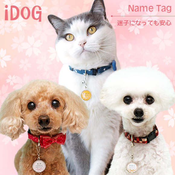 【迷子札 名札】 iDog&iCat ネームタグ【迷子札】花結び 【ネームプレート ドッグタグ】:犬の服のiDog
