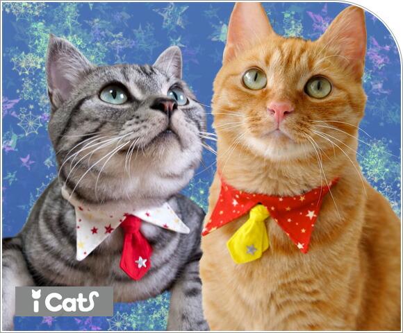 猫 首輪 iCat アイキャット デザインカラー スタースター 猫の首輪 猫首輪 安全首輪
