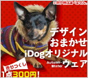 iDog IDOG clearance sale at Maruzen ★ autumn and winter for pet clothes one piece 300 yen! M flight 2 / 3 * per person 1 point * no refunds * minor stains and 10P30Nov14
