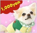 Outlet sale ★ iDog IDOG apples take take down vest