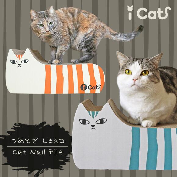 【猫 つめとぎ】iCat アイキャット オリジナル つめとぎ しまネコ【段ボール】