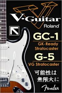 Roland V-Guitar