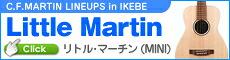 Little Martin Series
