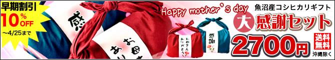バンダナ包み 母の日