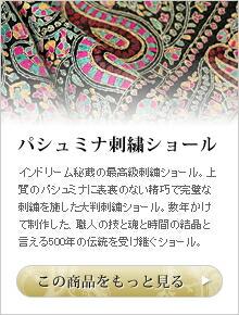 パシュミナ刺繍ショールを見に行く