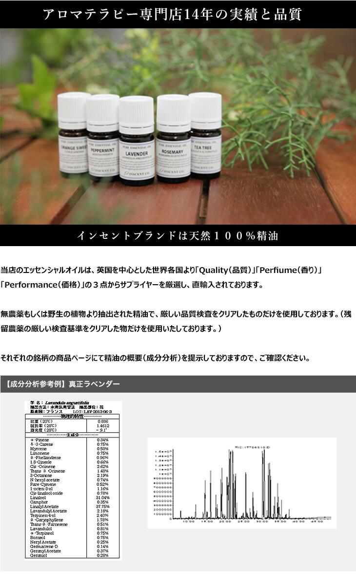 キャンペーン500円ミニセット画像