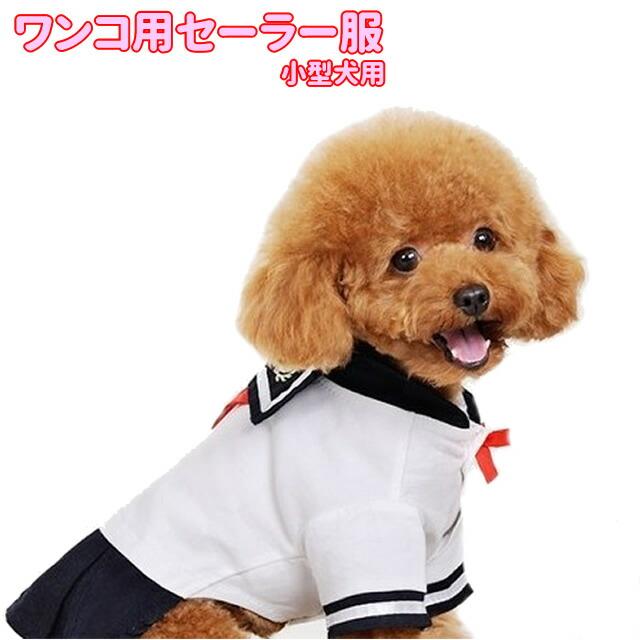 犬・猫・セーラー服・コスチューム・コスプレ・なりきり・犬服・チワワ