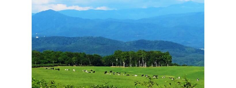 北海道の牧場風景写真