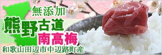 【梅】熊野南高梅