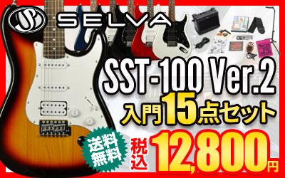 Selva SST-100 Ver.2