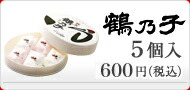 ��ǵ��5���� 600��