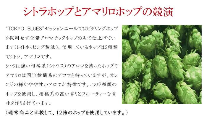 東京ブルースではビタリングホップを採用せず全てアロマチックホップのみで仕上げています。(レイトホッピング製法)様々なホップの中から香りの質と苦味がマイルドなものを厳選しました。使用しているホップは2種類でシトラ、アマリロです。 シトラは名前の通り、出来上がったビールに強い柑橘系(シトラス)のアロマを加えるホップです。アマリロもシトラ同様、柑橘系のアロマをビールに加えるのですが柑橘系の中でもオレンジの様なやや甘いアロマがするホップです。