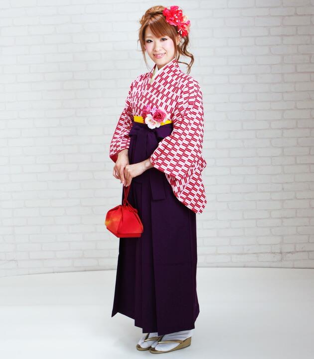 創業60周年祭!安心・信頼の ... : 桜 飾り : すべての講義