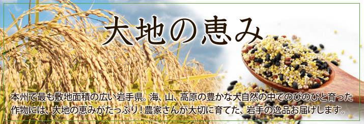 岩手 大地の恵み 旬のフルーツ 米
