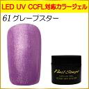 젤 네일 컬러 젤 LED UV 흡수 오프 5ml No.61 포도 스타