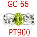 그렇게 왕이 빈 프레임/PT900, ≪ GC66 ≫