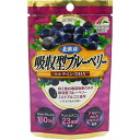 31 Riken absorbing form blueberries