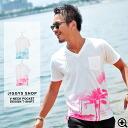 ◆It is spring and summer in T-shirt short sleeves half sleeve cut-and-sew print half-length sleeves short sleeves T-shirt older brother system fashion older brother men fashion pocket surf spring and summer of T-shirt men older brother of design T-shirt
