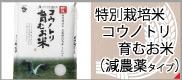 コウノトリ(減農薬)