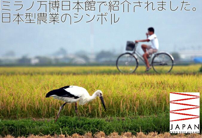 ミラノ万博日本館で紹介されました。日本型農業のシンボル
