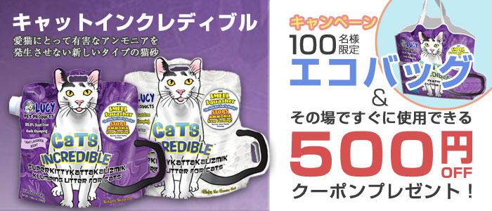 エコバッグ&500円OFFクーポン キャンペーン