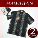 wu372 brand new floral border short sleeve rayon 100% Hawaiian shirts mens Aloha Hawaiian shirt (big size there!)