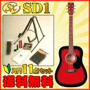 SX SD1-RDS s acoustic guitar.""