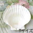 Decoupage for shell carving shell plate SOAP dish, SOAP tree, tray, glove compartment paper napkins, SOAP carving material, goods, easy tool decoupage shell