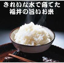 福井県の美味しいお米がいっぱい