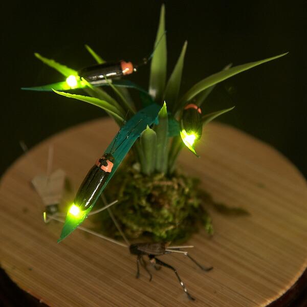美术发光萤火虫